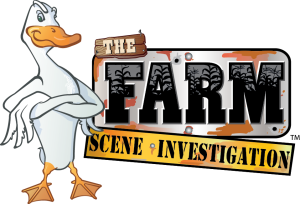 FSI logoweb